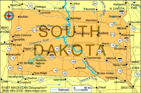 What is the state 花 of South Dakota?