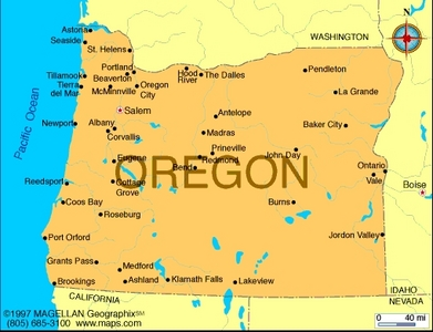 What is the state پھول of Oregon?