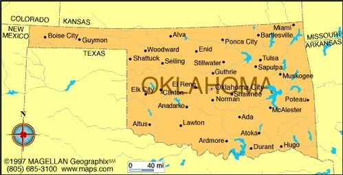 What is the state flower of Oklahoma?