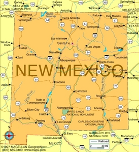 What is the state flower of New Mexico?