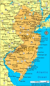 What is the state fleur of New Jersey?