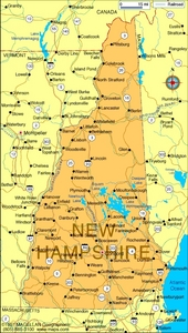 What is the state flower of New Hampshire?