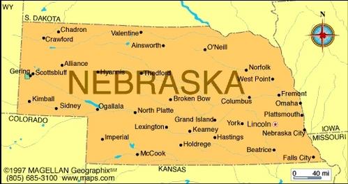 What is the state flower of Nebraska?