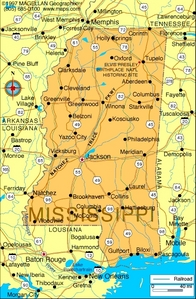 What is the state flower of Mississippi?