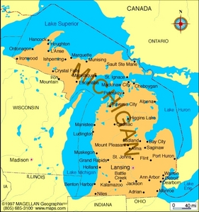 What is the state ফুল of Michigan?