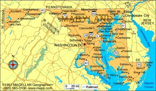 What is the state fleur of Maryland?