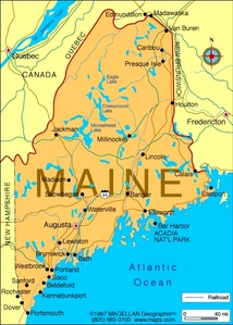 What is the state flor of Maine?