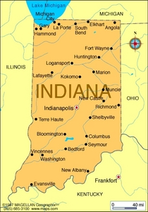 What is the state flower of Indiana?