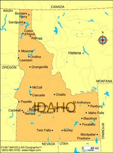What is the state پھول of Idaho?