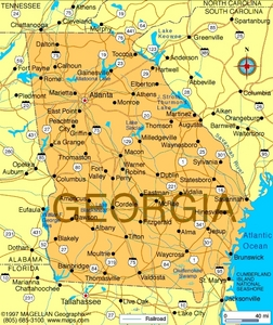 What is the state flor of Georgia?