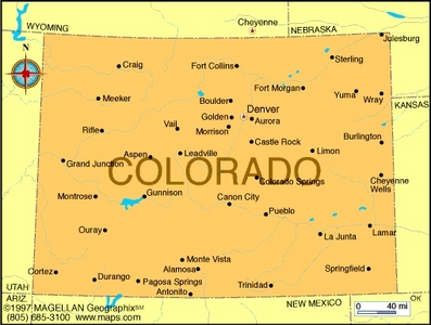 What is the state پھول of Colorado?