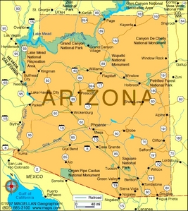 What is the state flower of Arizona?