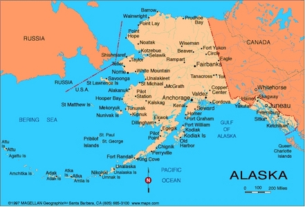 What is the state blume of Alaska?