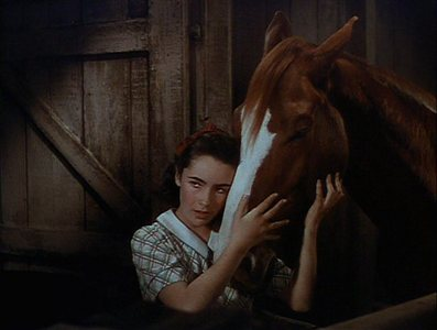 "A ngôi sao in the making - Elizabeth Taylor starred in the film ""National Velvet"" Which race did she want to enter the horse in?"