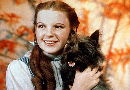 What was Toto's (Dorothy's pooch in the Wizard of Oz) REAL name?