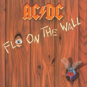 Fly on the Wall was released in ?