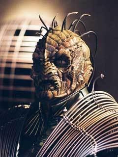 estrella Trek species: He is a ___________