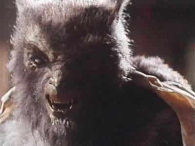 Movie Werewolves: Which Movie?