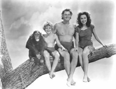 Gable was considered for the role of Tarzan ?