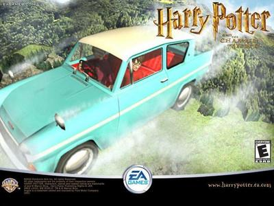 Harry Potter and the Chamber of Secrets (Movie): How many Muggles saw the flying car?