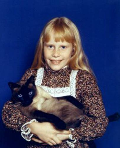 Which President's daughter had a siamese cat named Misty Ying Yang?