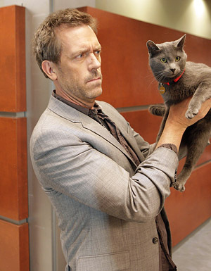 "house md, 5x18 ""here kitty"": what was the name of the ""death cat""?"