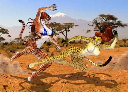 How will win Cheetah vs Tigra?
