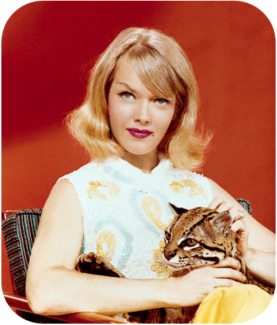 COLUMBO'S GUEST STARS : VICTIMS OR MURDERERS ? Anne Francis.