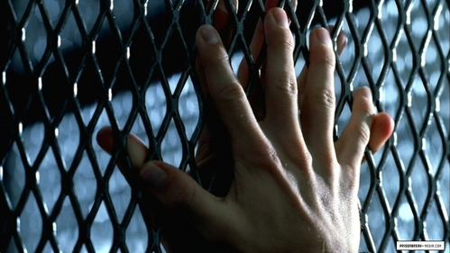 Those hands belong to...