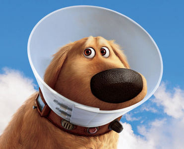 The Cone of ______?