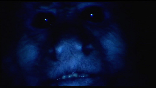 "What does the monkey at the end of the movie ""Twin Peaks : Fire Walk With Me"" say?"