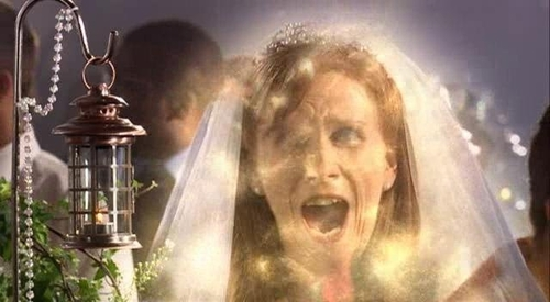"What is the name of the particles that Lance gave to Donna in ""The Runaway Bride""?"