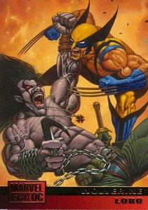 Which character won in the fan determined battle between Wolverine and Lobo?