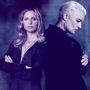 TRUE o FALSE: As of July 2008, the Buffy Summers spot has più fan than the Spike spot.