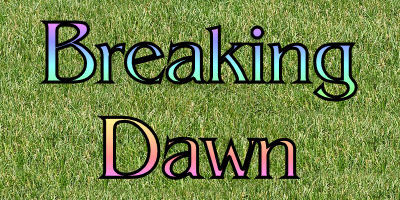 What was the first words Jacob sagte in Breaking Dawn?