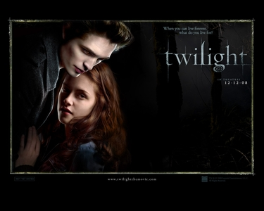 On what day and year did stephenie meyer begin writting her first novel twilight?