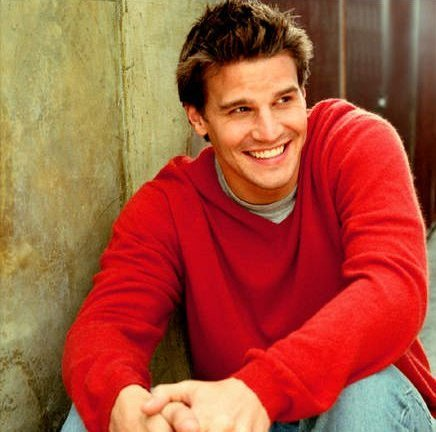 How was David Boreanaz first discovered?