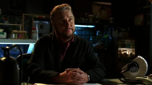 "Grave Danger Trivia: What is the name of the horse Grissom ""owns""?"