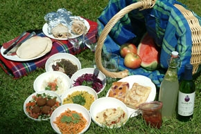 FROM THE BOOK: What food was Anne looking آگے to eating at the Sunday school picnic?