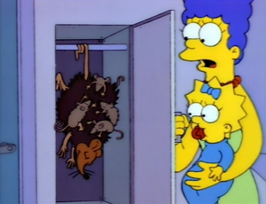 What does Homer call the big possum on the Springfield Monorail?