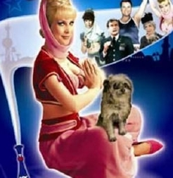 What was the name of Jeannie's dog?