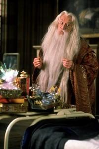 How old was Albus Dumbledore?