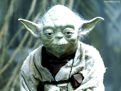 What species is Yoda?