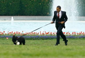 President Obama & His new Dog, Bo