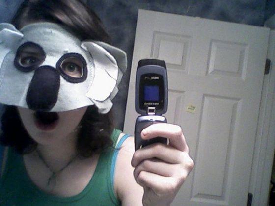 (It's me.) I'm a koala bear. Honest.