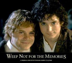 Фродо гей