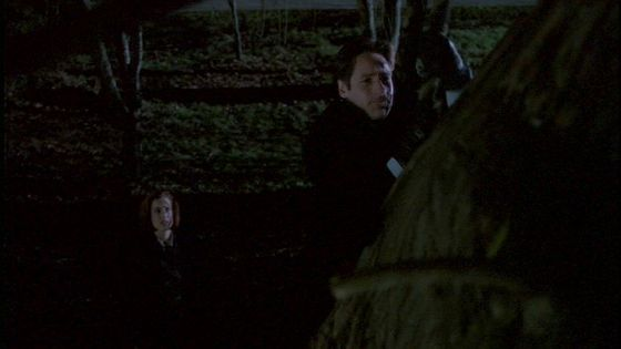 Season Five Schizogeny # ~ Mulder : Scully Is This Demanstration Of Boyish Agilty Turning anda On At All???