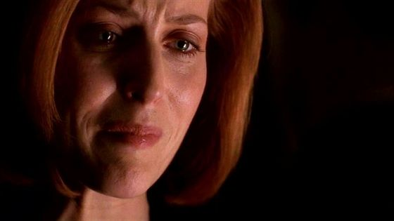 Season Eight Deadalive # ~  Scully : I Need To See Him - Dogett: I No But I Wish You Wouldnt (Talking About Mulder)