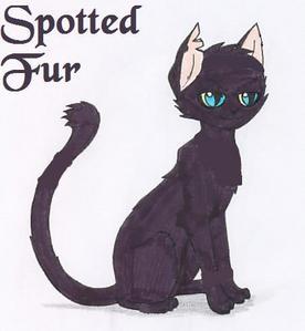 SpottedFur