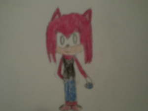 ruby the hedgehog with the Blue Chaos émeraude